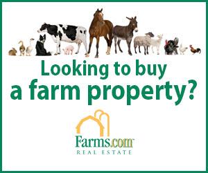 Farms.com Real Estate Canada Animals