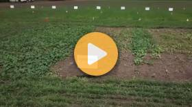Planting populations for late planted soybeans
