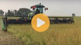 #Harvest18