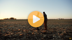 Climate FieldView for Planning Corn and Soybeans