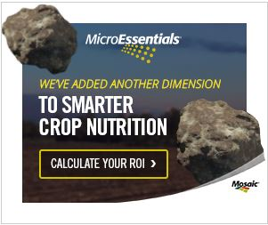 Microessentials