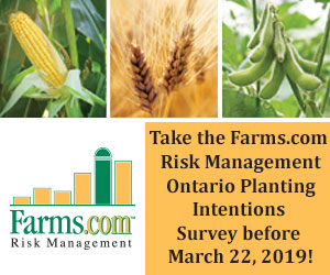 Risk Management Planting Intentions