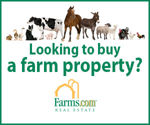 Farms.com Real Estate Canada Animals