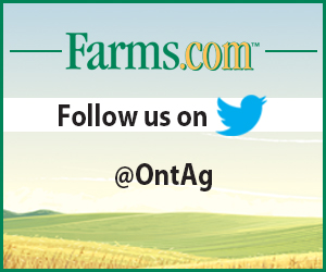 Follow ontag on twitter