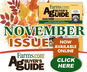 ABG November Flipbook