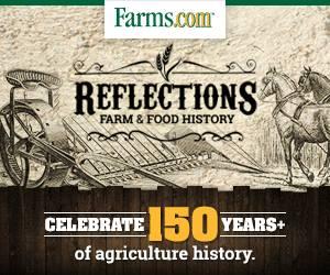 Farms.com Reflection