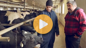 A look inside Ontario's biosecurity workshops