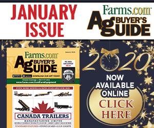 ABG January 2020 Flipbook
