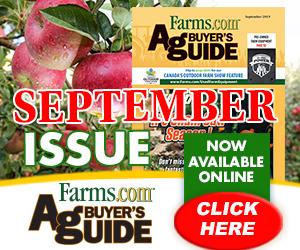 September ABG Flipbook