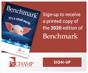 Sign up for Benchmark 2020