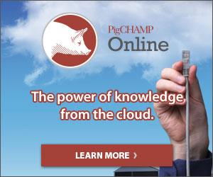 PigCHAMP Online