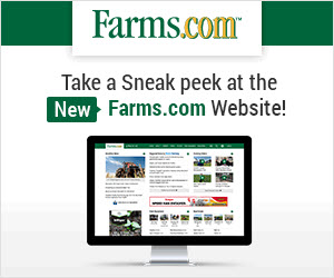 Farms.com Reflections Website