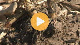 Soil Sampling Methods