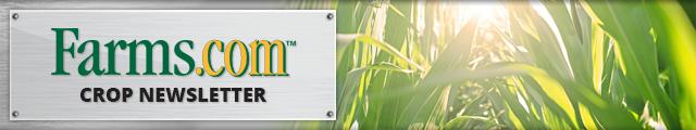 Farms.com US Crop Newsletter