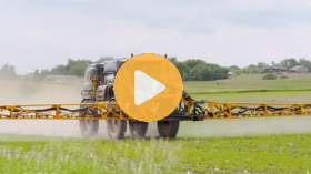 Soybean fungicide timing and tips