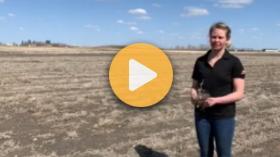 Preserving soil moisture