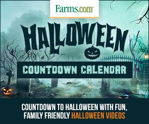 Halloween Countdown Calendar