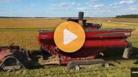 Grain carts from Brandt