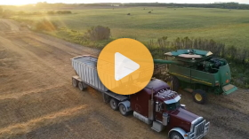 Harvesting the 2020 grain crop