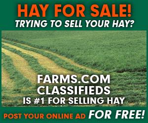 Farms.com Classifieds Hay