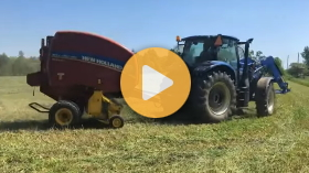 Harvesting alfalfa: tips for your 5 day window