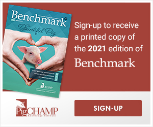 Benchmark 2021 Sign up