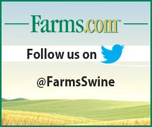 Follow FarmsSwine on Twitter
