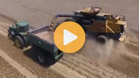 Timing Wheat Harvest